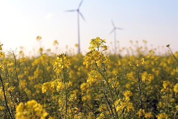 Sokół – wdrożenie innowacyjnych technologii środowiskowych