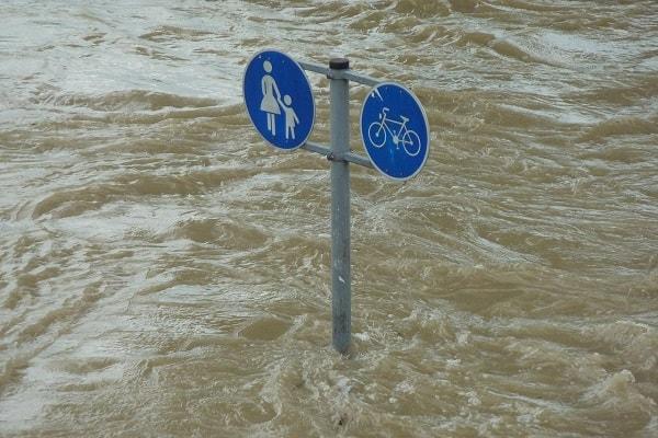 Adaptacja do zmian klimatu oraz ograniczanie skutków zagrożeń środowiska