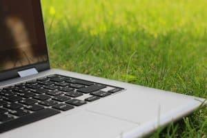 Obraz StockSnap z Pixabay