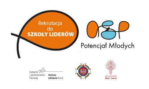 Źródło: Zarząd Główny Związku Ochotniczych Straży Pożarnych RP, zosprp.pl.